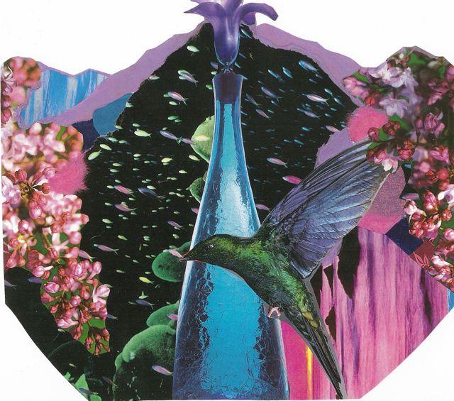 Fish, Hummingbird, and Bottle