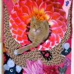 Flying Flower Cat, Catherine Raine 2014
