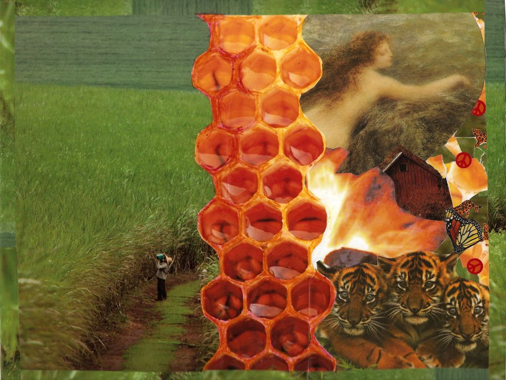 Honey Way