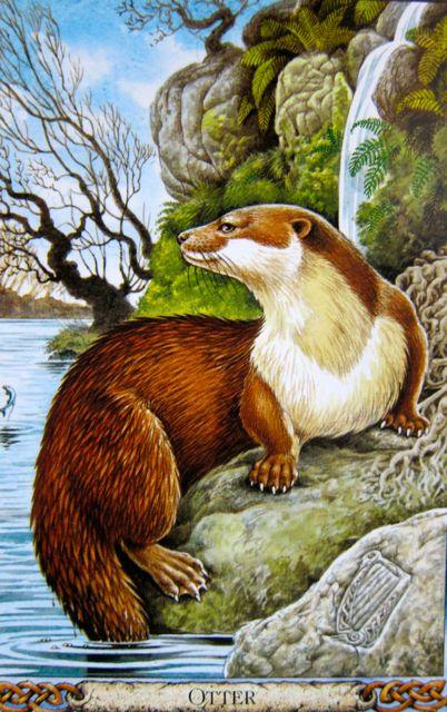 Illustration by Bill Worthington
