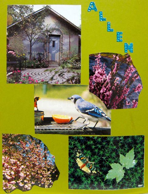 Allen's Collage