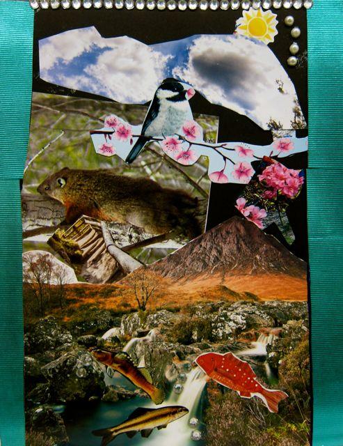 Iqra's collage