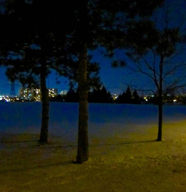 Winter Evening, Jack Goodlad Park