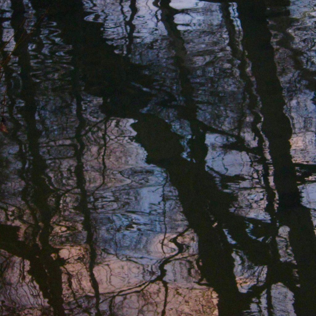 Taylor Massey Creek